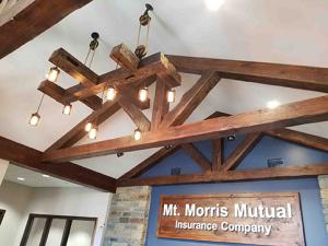 Mt. Morris Light Fixture